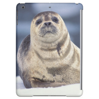 North America, USA, Alaska, S.E., Le Conte Cover For iPad Air