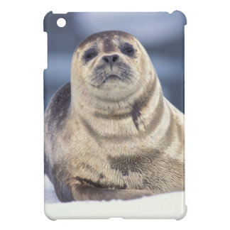 North America, USA, Alaska, S.E., Le Conte iPad Mini Cover