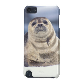 North America, USA, Alaska, S.E., Le Conte iPod Touch 5G Cover
