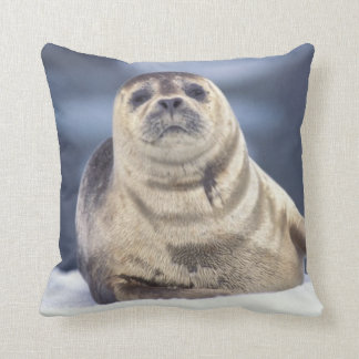 North America, USA, Alaska, S.E., Le Conte Throw Pillow