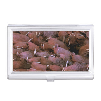 North America, USA, Alaska, Yukon Delta National Business Card Holder