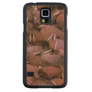 North America, USA, Alaska, Yukon Delta National Carved Maple Galaxy S5 Case