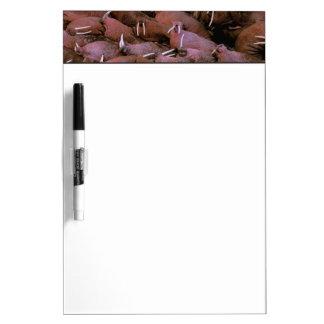 North America, USA, Alaska, Yukon Delta National Dry Erase Board