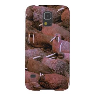 North America, USA, Alaska, Yukon Delta National Galaxy S5 Cases