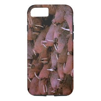 North America, USA, Alaska, Yukon Delta National iPhone 7 Case