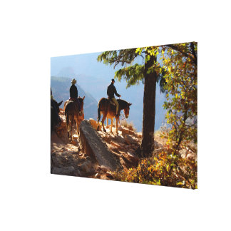 North America, USA, Arizona, Grand Canyon 2 Gallery Wrapped Canvas