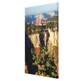 North America, USA, Arizona, Grand Canyon Gallery Wrap Canvas