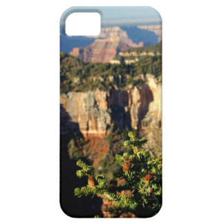 North America, USA, Arizona, Grand Canyon iPhone 5 Cover
