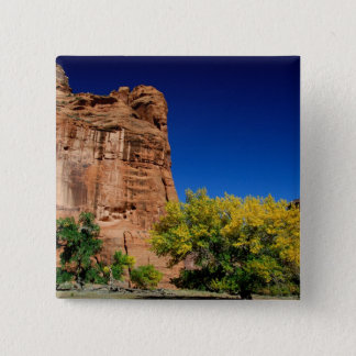 North America, USA, Arizona, Navajo Indian 3 15 Cm Square Badge