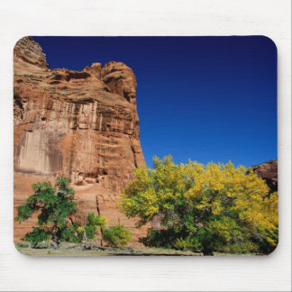 North America, USA, Arizona, Navajo Indian 3 Mouse Mat