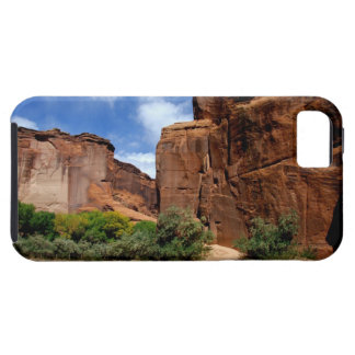 North America, USA, Arizona, Navajo Indian 5 iPhone 5 Cases