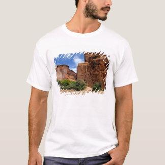 North America, USA, Arizona, Navajo Indian 5 T-Shirt