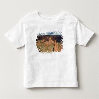 North America, USA, Arizona, Navajo Indian 6 Toddler T-Shirt