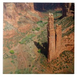 North America, USA, Arizona, Navajo Indian 7 Tile