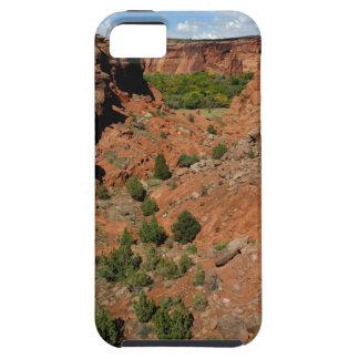 North America, USA, Arizona, Navajo Indian iPhone 5 Cover