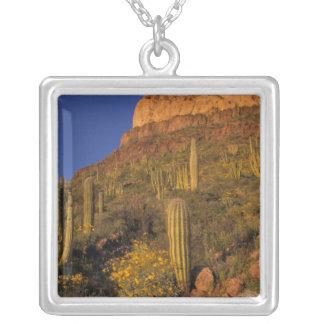 North America, USA, Arizona, Organ Pipe Cactus 2 Silver Plated Necklace