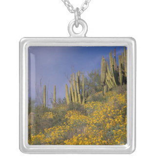 North America, USA, Arizona, Organ Pipe Cactus Silver Plated Necklace