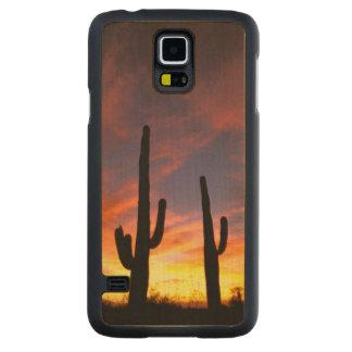 North America, USA, Arizona, Sonoran Desert. Carved Maple Galaxy S5 Case