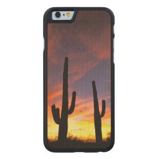 North America, USA, Arizona, Sonoran Desert. Carved Maple iPhone 6 Case