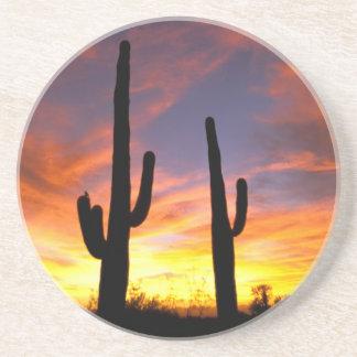 North America, USA, Arizona, Sonoran Desert. Coaster