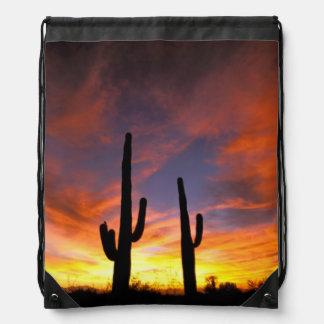 North America, USA, Arizona, Sonoran Desert. Drawstring Bag