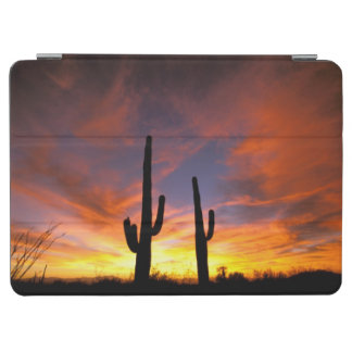 North America, USA, Arizona, Sonoran Desert. iPad Air Cover