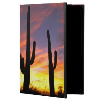 North America, USA, Arizona, Sonoran Desert. iPad Air Cover