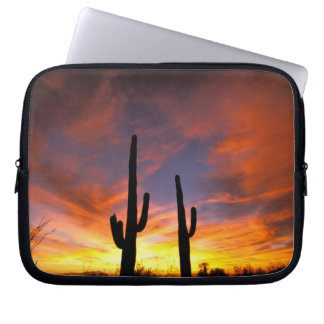 North America, USA, Arizona, Sonoran Desert. Laptop Computer Sleeves
