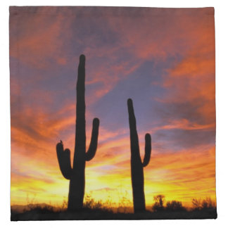 North America, USA, Arizona, Sonoran Desert. Napkin
