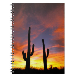 North America, USA, Arizona, Sonoran Desert. Spiral Notebook