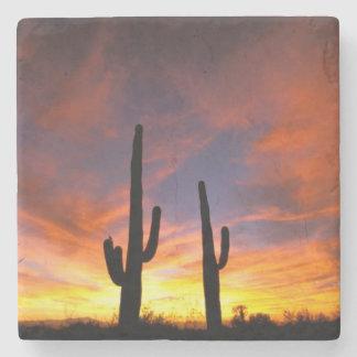 North America, USA, Arizona, Sonoran Desert. Stone Coaster