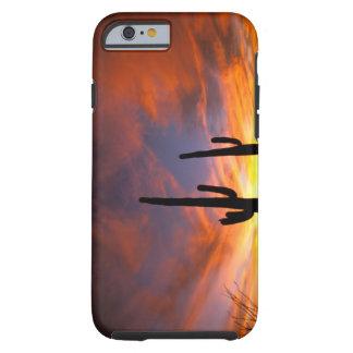 North America, USA, Arizona, Sonoran Desert. Tough iPhone 6 Case