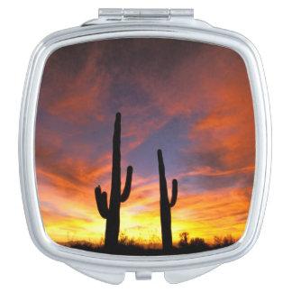 North America, USA, Arizona, Sonoran Desert. Vanity Mirrors