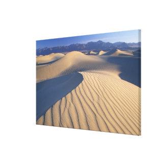 North America, USA, Califorinia, Death Valley 3 Canvas Prints