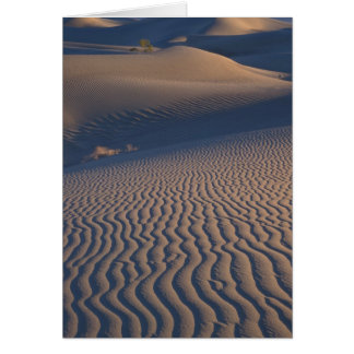 North America, USA, Califorinia, Death Valley Greeting Cards