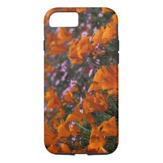North America, USA, California, Antelope Valley, 2 iPhone 8/7 Case