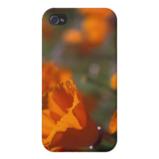 North America, USA, California, Antelope Valley, iPhone 4 Cases