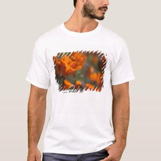 North America, USA, California, Antelope Valley, T-Shirt