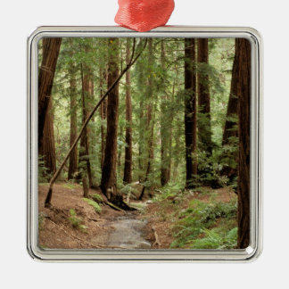 North America, USA, California, Big Sur, 3 Christmas Ornament