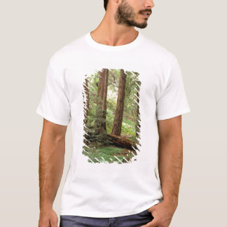 North America, USA, California, Big Sur, T-Shirt