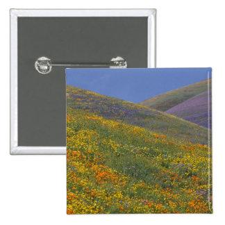 North America, USA, California, Los Angeles 15 Cm Square Badge