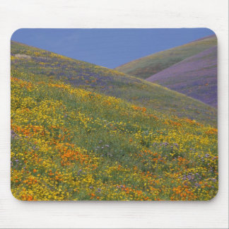 North America, USA, California, Los Angeles Mouse Mat