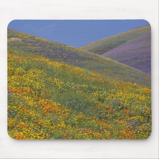 North America, USA, California, Los Angeles Mouse Pads