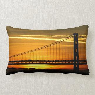 North America, USA, California, San Francisco. 3 Lumbar Cushion