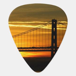 North America, USA, California, San Francisco. 3 Plectrum
