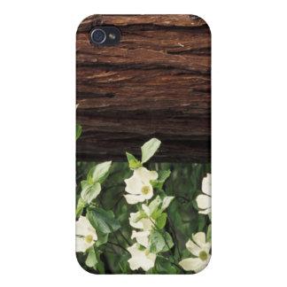 North America, USA, California, Yosemite 3 iPhone 4/4S Case