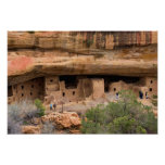 North America, USA, Colorado. Cliff dwellings Poster