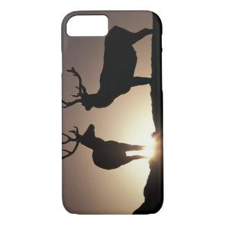 North America, USA, Colorado. Rocky Mountains iPhone 8/7 Case