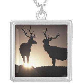 North America, USA, Colorado. Rocky Mountains Silver Plated Necklace