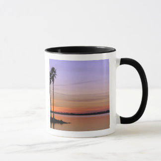 North America, USA, Florida, Mt. Dora, a trio Mug